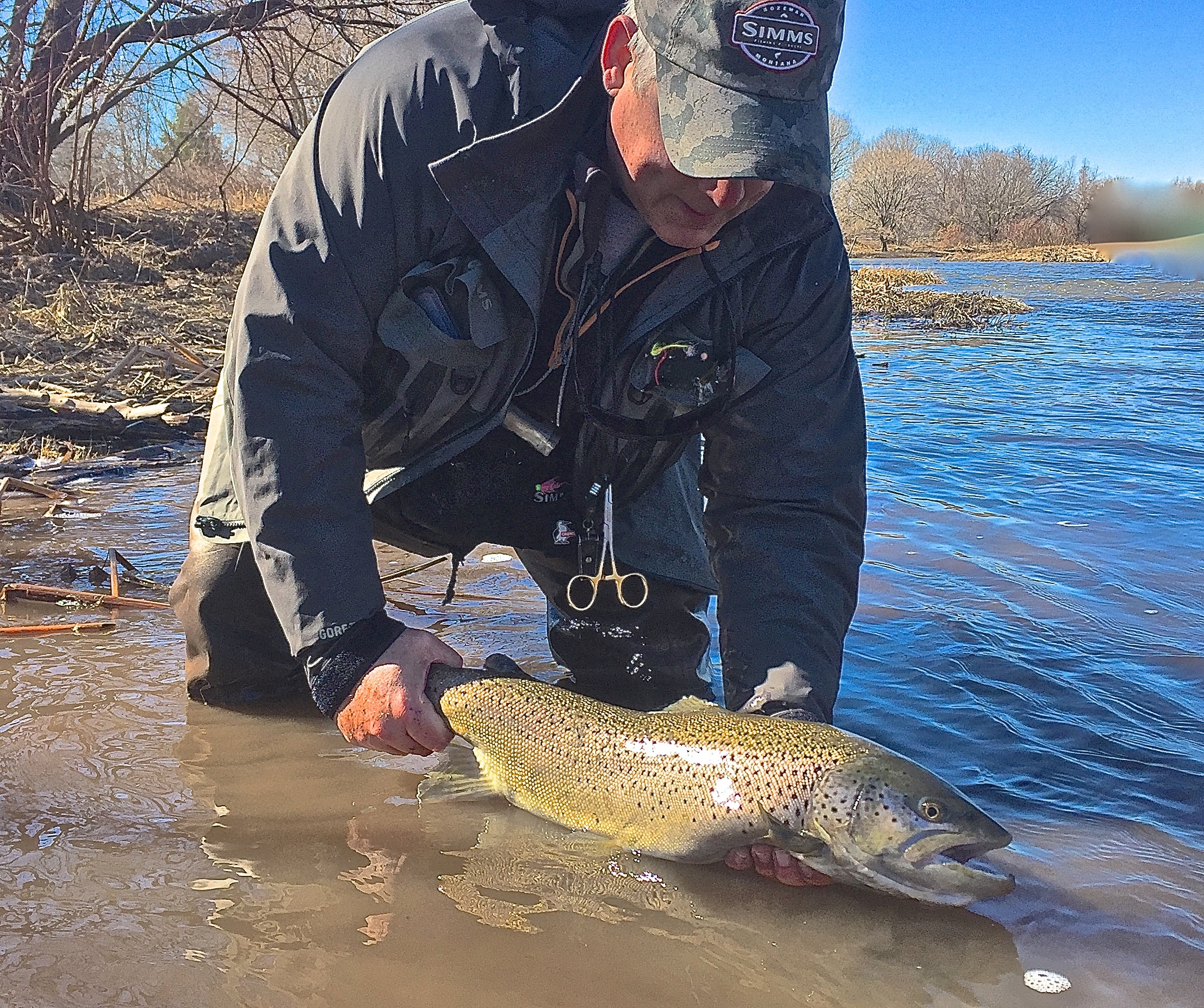 Salmon River Fishing Reports